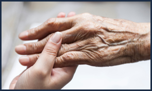 Financial Elder Abuse / Fraud / Undue Influence
